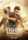 Tiger Zinda Hai HD Video Songs
