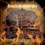 Baagi Ja Badshah By Various Artists Mp3 Songs