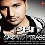 Punjabi By Nature - Crowd Pleaser By Crowd Pleaser Mp3 Songs