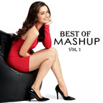 Best of Mash Ups vol.1 By Various Artist Mp3 Songs