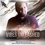Viber Unleashed Vol.6 By Ribin Richard Mp3 Songs