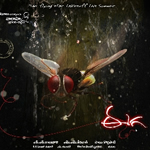 Eega Songs