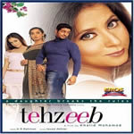 Tehzeeb Mp3 Songs